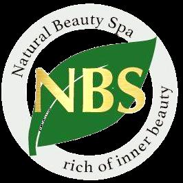 NBS Logo Transparent